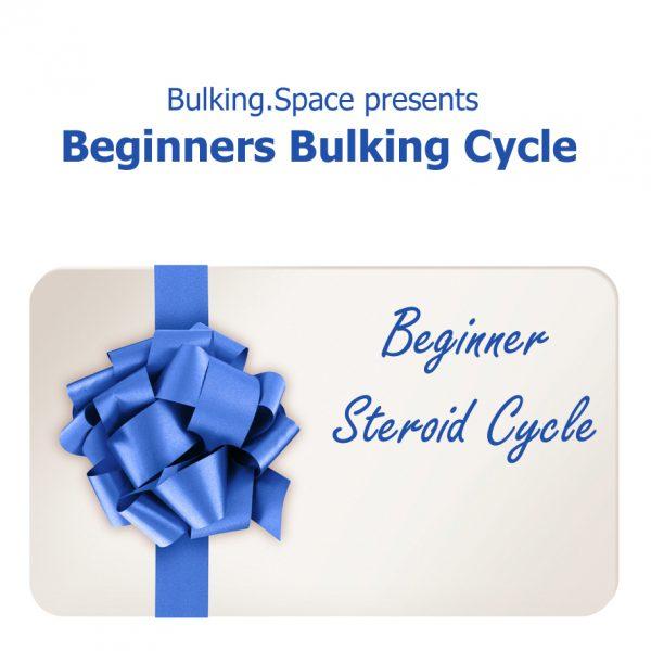 beginners bulking cycle